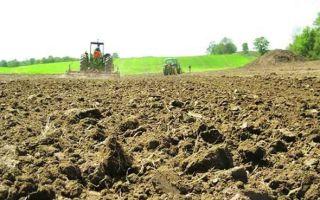 Договор субаренды земельного участка 2020 — образец, что это такое, части, сельскохозяйственного назначения, регистрация