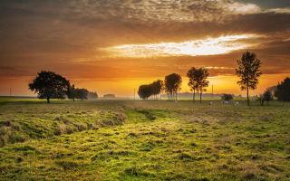 Присвоение адреса земельному участку 2020 — в населенном пункте, заявление, постановление, почтового, в снт, сельскохозяйственного назначения, порядок, документы