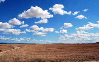Выдел земельного участка 2020 — из существующего участка, что это такое, доли, в натуре