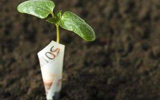 Cрок уплаты земельного налога 2020 — сдачи, оплаты, декларации, для юридических лиц, на землю, для физических лиц, порядок