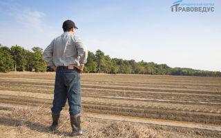 Право пользования земельным участком 2020 — безвозмездного, срочного, бессрочного, постоянного, ограниченного, это