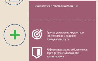 Как создать тсж 2020 — условия, в многоквартирном доме, в нескольких, порядок, пошаговая инструкция, форма протокола
