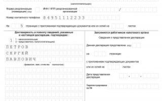 Нулевая декларация по налогу на имущество 2020 — организаций, заполнение, юридических лиц