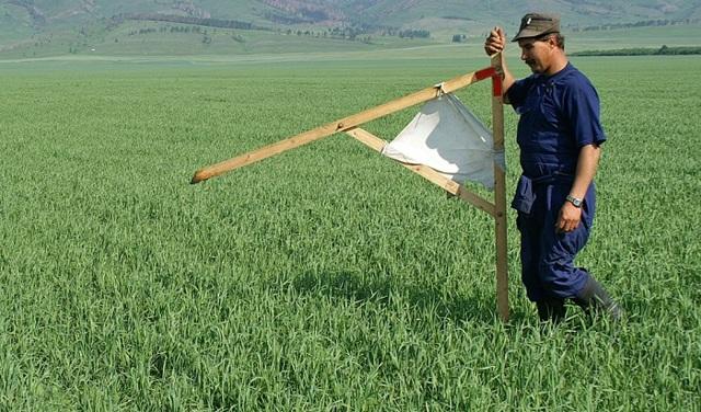 Договор субаренды земельного участка 2020 - образец, что это такое, части, сельскохозяйственного назначения, регистрация