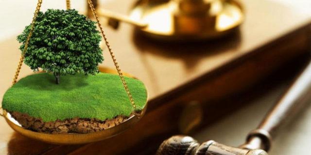 Оспаривание кадастровой стоимости земельного участка 2020 - документы, порядок, процедура, срок, заявление