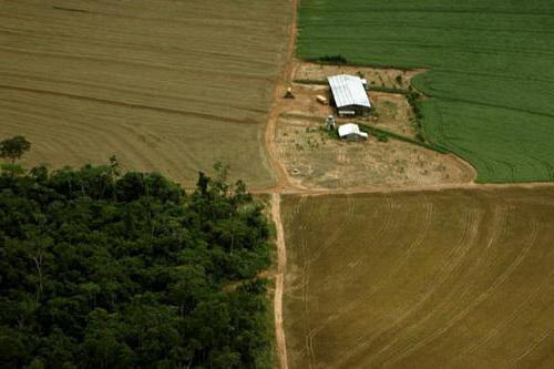 Безвозмездное пользование земельным участком 2020 - договор, право, передача, предоставление, образец, регистрация