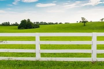 Земельный участок ЛПХ 2020 - что это такое, как зарегистрировать постройки, как перевести в ИЖС