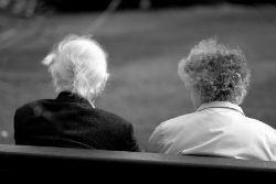 Льготы пенсионерам по земельному налогу 2020 - как получить, есть ли, по уплате, как оформить