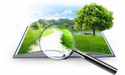 Оценка земельного участка 2020 - кадастровая, рыночная, стоимость, виды, методы, отчет, независимая