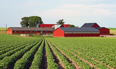Аренда земельного участка 2020 - у администрации города, в муниципальной собственности, сельскохозяйственного назначения, без торгов, регистрация договора, право, сельское поселение