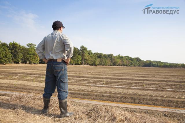 Право пользования земельным участком 2020 - безвозмездного, срочного, бессрочного, постоянного, ограниченного, это