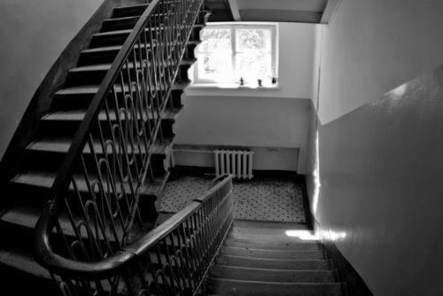 Уборка лестничных площадок в многоквартирном доме 2020 - нормативы, правила