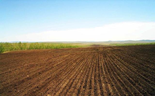 Срок аренды земельного участка 2020 - на неопределенный срок, договор, максимальный срок, сельскохозяйственного назначения