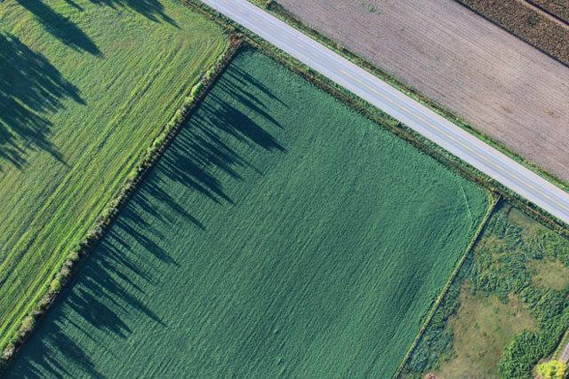 Общая долевая собственность на земельный участок 2020 - право, сельхозназначения, раздел, распоряжение, как выдлеить