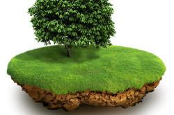 Свидетельство о праве собственности на земельный участок 2020 - регистрация, документы, как получить