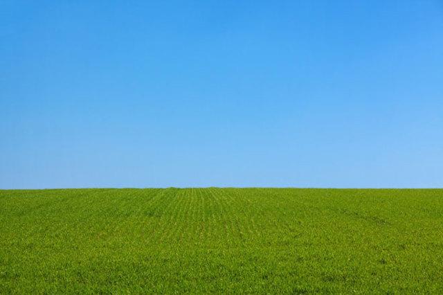Присвоение адреса земельному участку 2020 - в населенном пункте, заявление, постановление, почтового, в СНТ, сельскохозяйственного назначения, порядок, документы