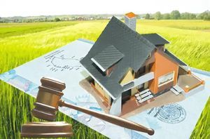 Аукцион земельных участков 2020 - по продаже, под ИЖС, торги, по аренде, правила, как проходят, порядок проведения