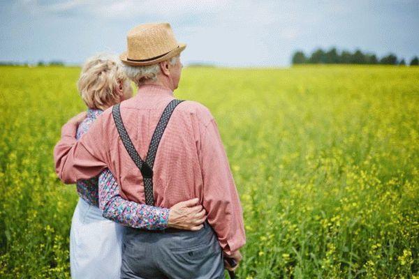 Земельный налог на дачный участок 2020 - для пенсионеров, для инвалидов, платить