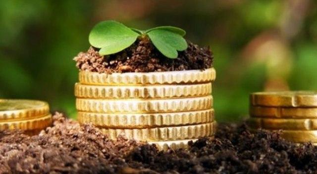 cрок уплаты земельного налога 2020 - сдачи, оплаты, декларации, для юридических лиц, на землю, для физических лиц, порядок